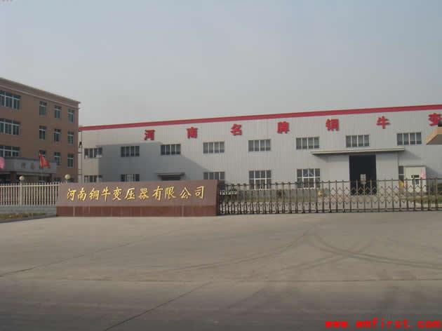 河南洛阳铜牛变压器有限公司